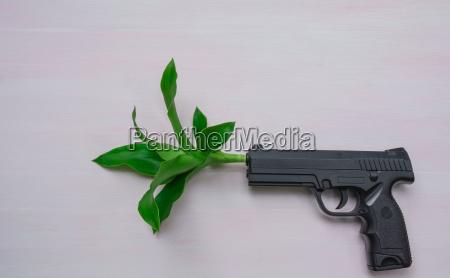 handgun on wooden background with plantwar