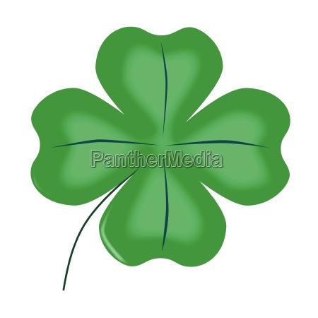 lucky four leaf shamrock