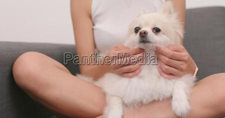 frau spielt mit pommerschen hund