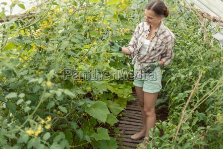 woman working in garden green house