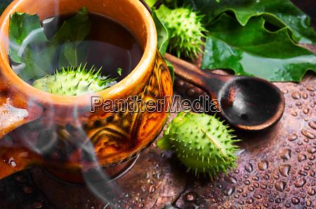 natural herbs medicine datura