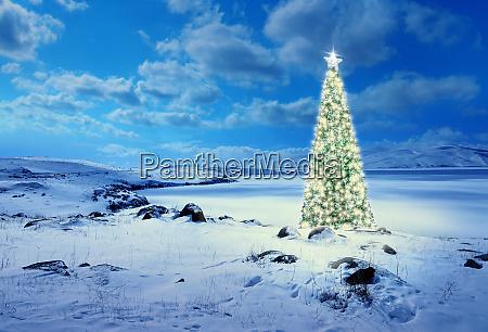 geschmueckter weihnachtsbaum mit bunten lichtern und