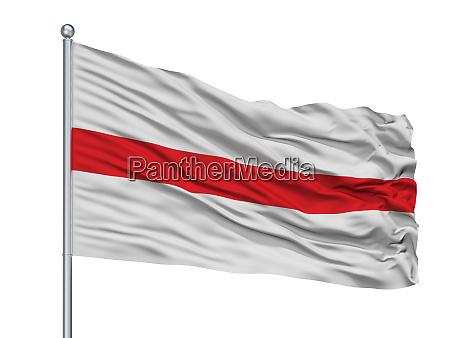 dendermonde city flag on flagpole belgium