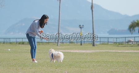 frauentraining mit ihrem pommerschen hund