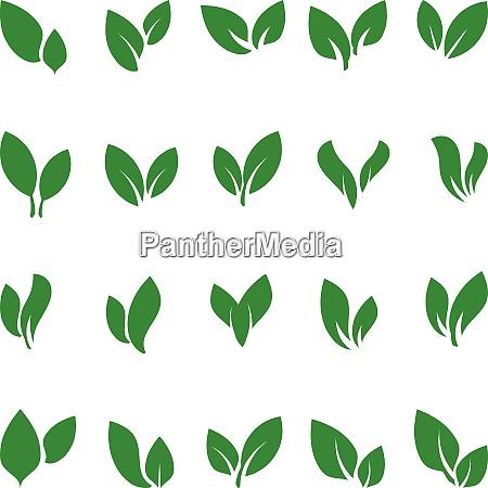 blaetter pflanzen bio natur icon logo