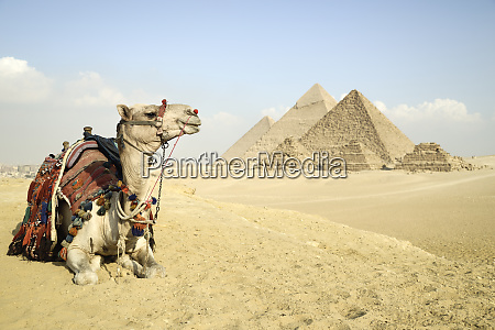 panoramic view of the pyramids from