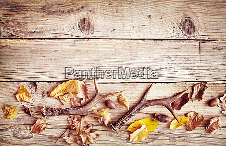 rustic wood with fall border of