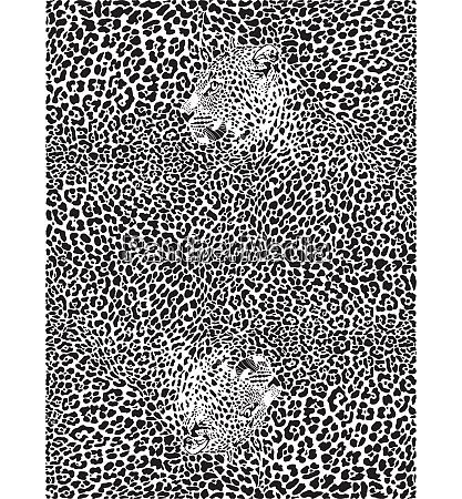 hintergrund mit leoparden