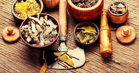 medicinal healing herbs