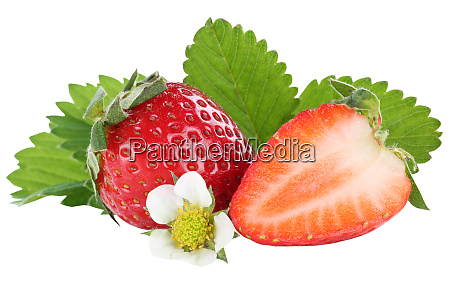 strawberry strawberries berry berries fruit fruits