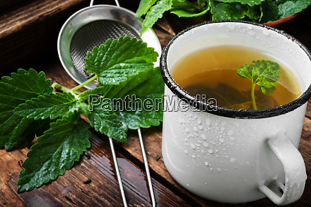 green melissa herbal tea