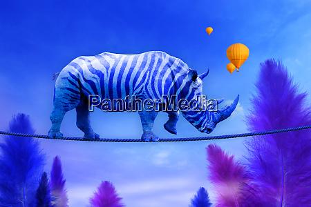 blue rhino walking on rope