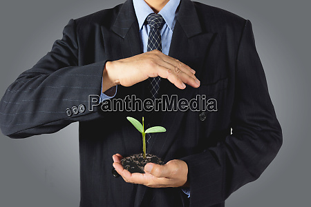 ecology concept businessman hands holding and