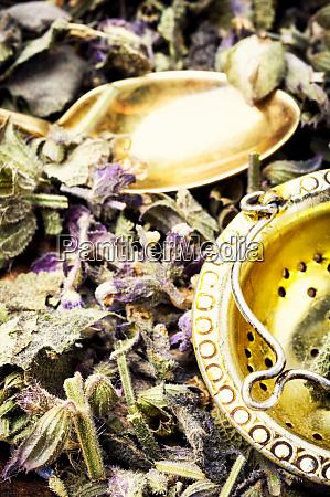 natural medicine and herbs