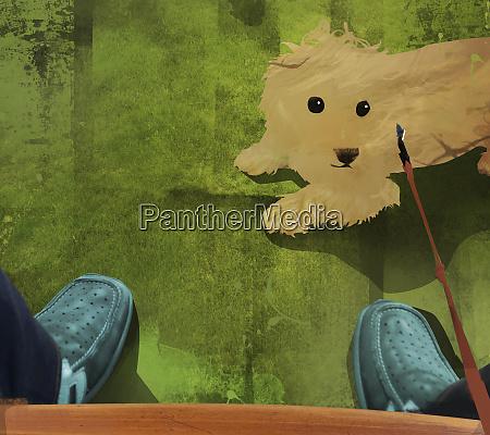 besitzer mit blick auf haustierhund an