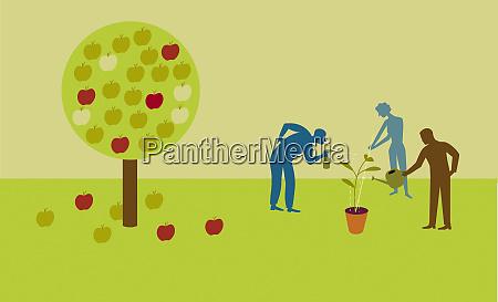 people nurturing seedling