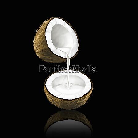 kokosmilch, die, von, einer, kokosnuss, zur, hälfte - 26003098
