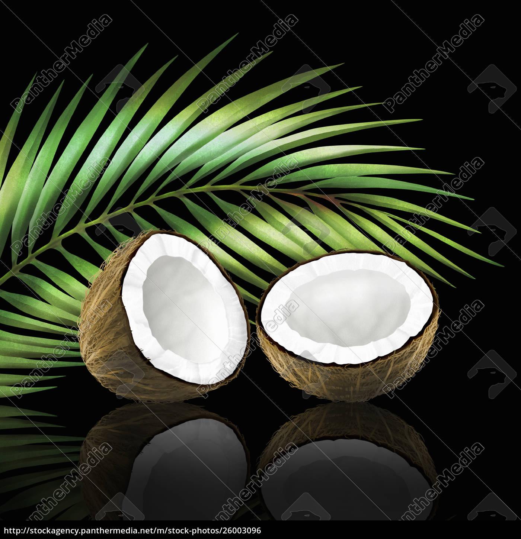 kokosnuss, in, zwei, hälften, mit, kokosblatt - 26003096