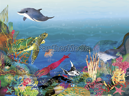 lots of sea life on colorful