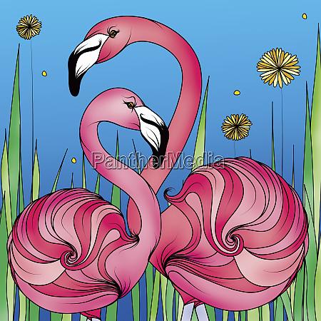 hellrosa flamingos