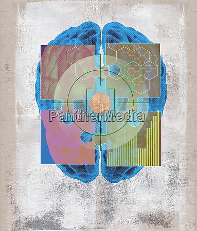 puzzleteile die sich ueber das menschliche