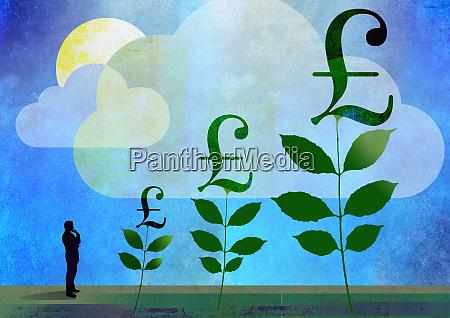 man watching british pound money trees