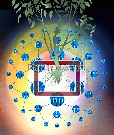 binary code data around tree growing