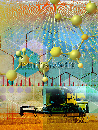 genetic research and agriculture collage