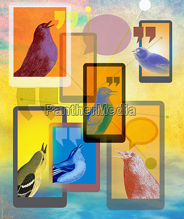 birds tweeting on mobile phones and