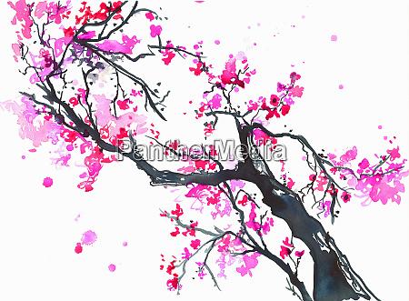 branch of bright pink spring blossom