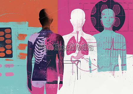 medical montage of human anatomy
