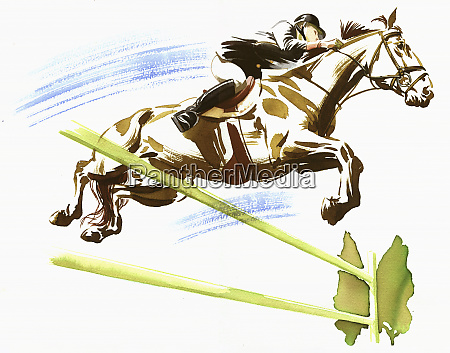 frau reitet pferd springen ueber zaun