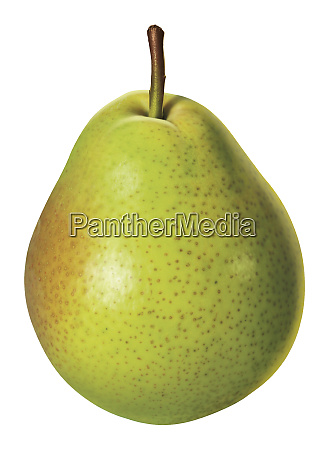 fresh green pear on white background