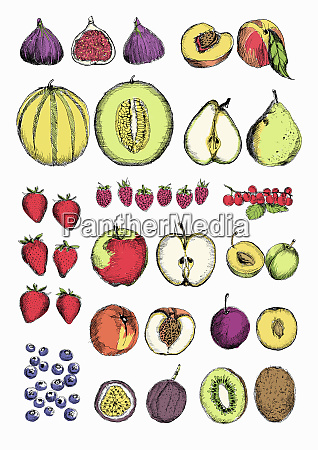 rows of different fruit whole and