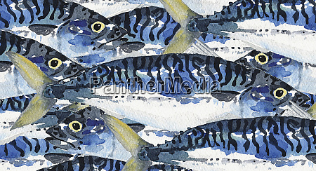 full frame watercolour painting of mackerel