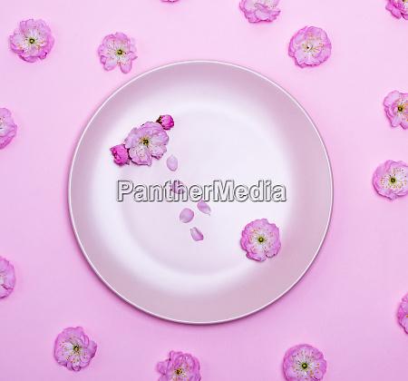 leere runde keramik rosa platte