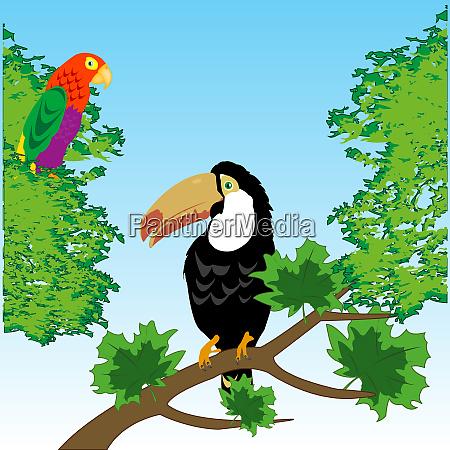 voegel toucan und papagei in tropenholz