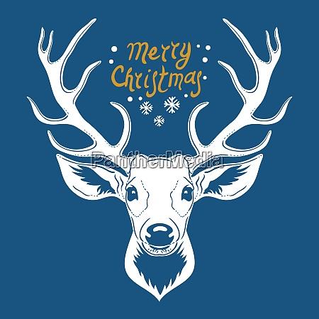 reindeer head isolated on blue