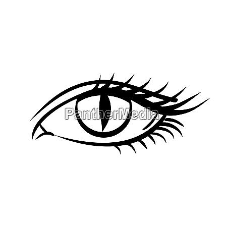 eye on white background makeup on