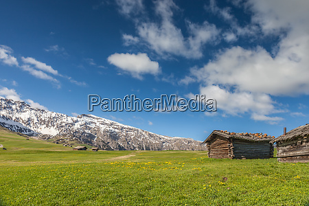 alpine meadows and mountain huts on