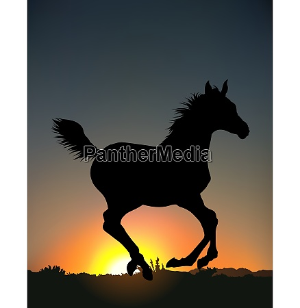 running horse silhouette background