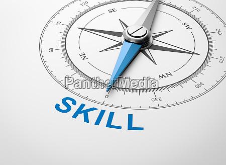 kompass, auf, weißem, hintergrund, skill-konzept - 26177353