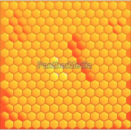 honigzellen