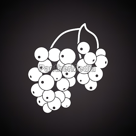 icon of black currant black background