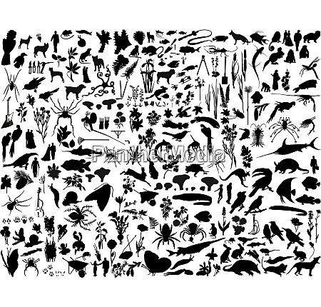 groesste sammlung von collage vektorillustriersilhouetten