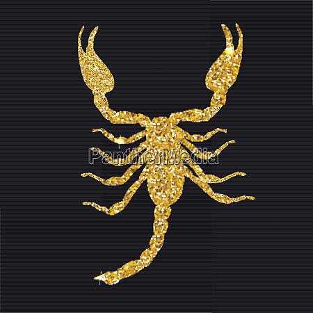 gold scorpion silhouette icon vector illustration
