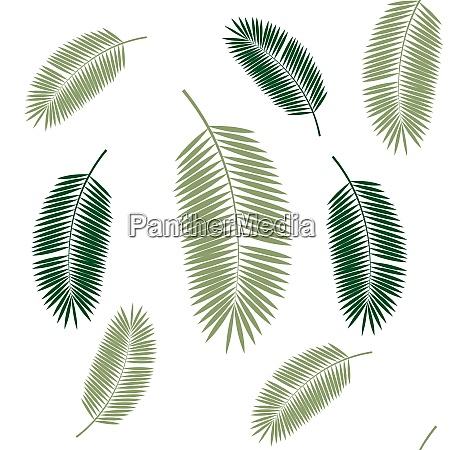 palm leaf nahtlose muster hintergrund vektor