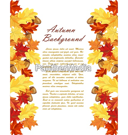 autumn frame with maple and