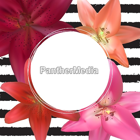 abstract frame with lily flower natural