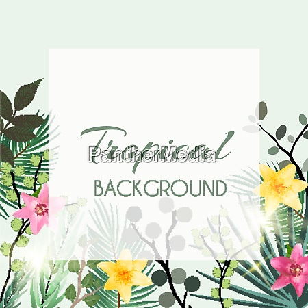 abstract natural tropical frame background with